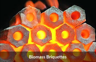 biomass-briquettes